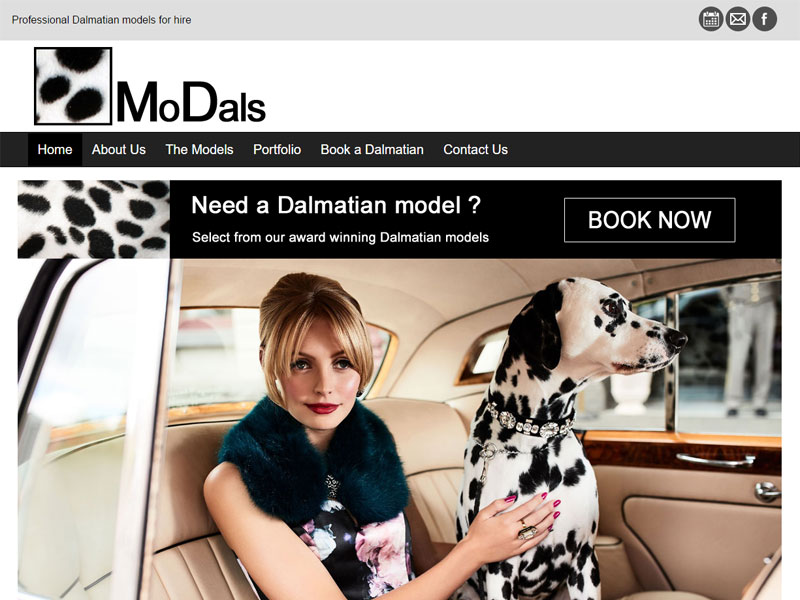 Modals Dalmatians - WordPress website