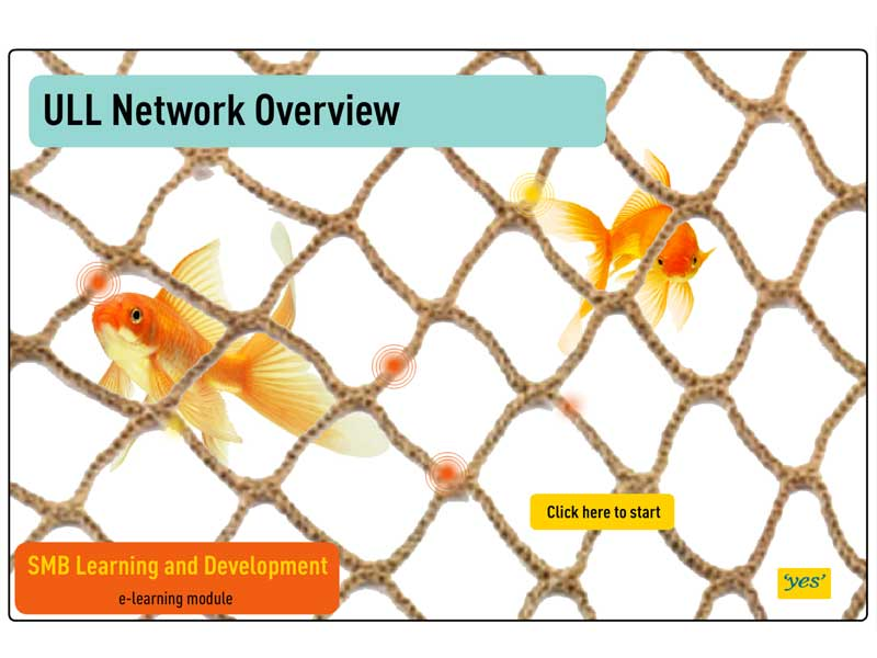 Network Overview - eLearning Flash/HTML