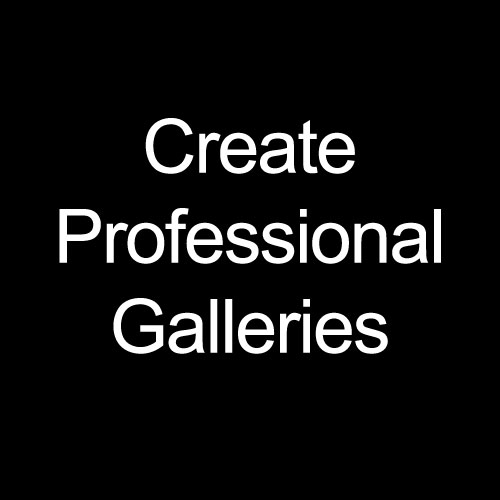 Create Professional Galleries